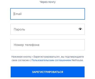 регистрация через почту нетхаус