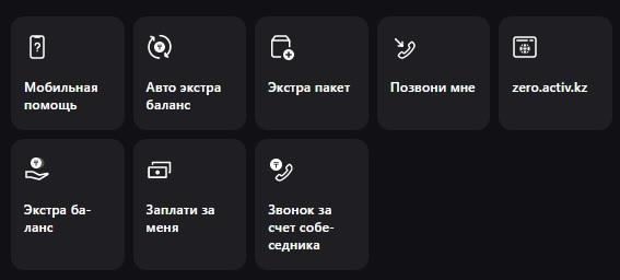 Актив услуги