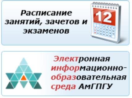 АмГПГУ услуги