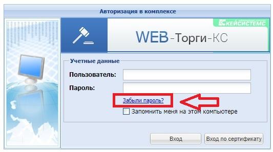 ВебТорги Самрегион пароль