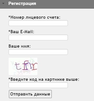 Infocit Ellis ru регистрация