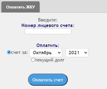 Infocit Ellis ru оплата